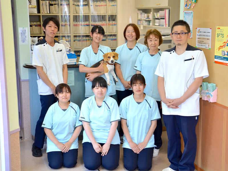 動物 病院 今治 ミル さくらい動物クリニック:愛媛県今治市 犬・猫・鳥・ウサギ・フェレット・ハムスター・モルモットの診療