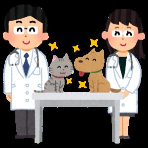 ミル動物病院コラム_動物愛護法改正に関して_マイクロチップの義務化画像