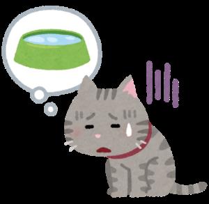 ミル動物病院9月コラム_老齢期の猫の健康管理について