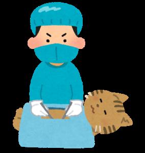 ミル動物病院_避妊手術_去勢手術について
